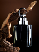 Male Perfume